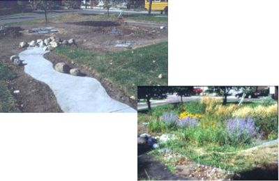 Example of a Neighborhood Rain Garden