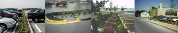 Bioretention examples for a commercial, industrial, or institutional setting.