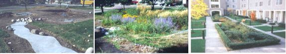 Examples of Bioretention in High Density Residential scenarios