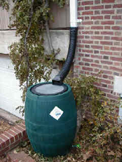 Typical rain barrel set-up for a residential property.